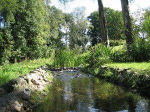 stromend water: panta rhei betekent alles stroomt